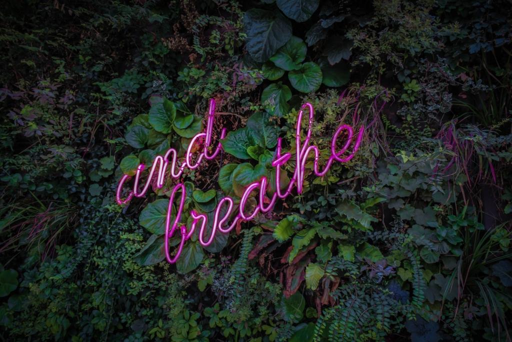 Contrôler ses émotions avec la respiration et la cohérence cardiaque