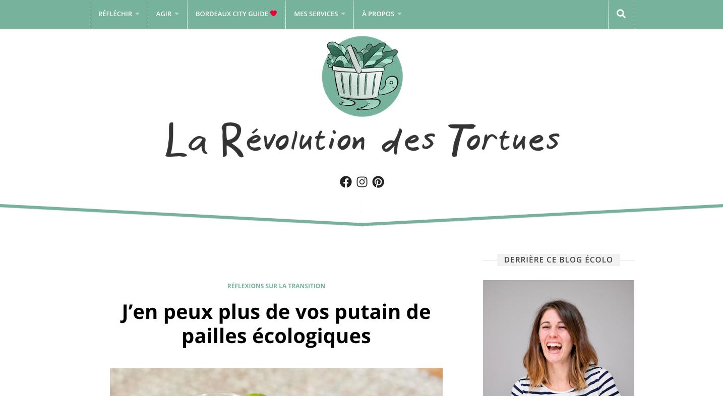 blogs-bien-etre-la-revolution-des-tortues
